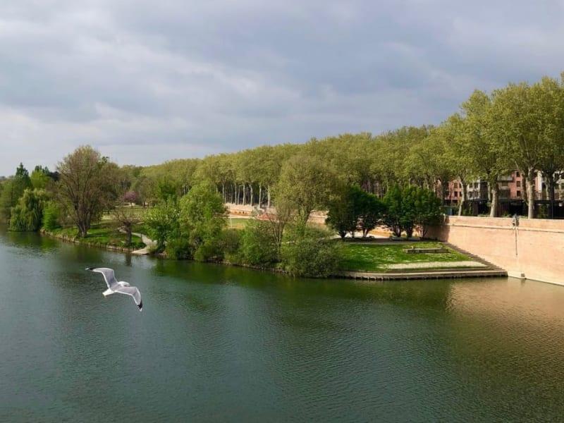 Location appartement Toulouse 835€ CC - Photo 1