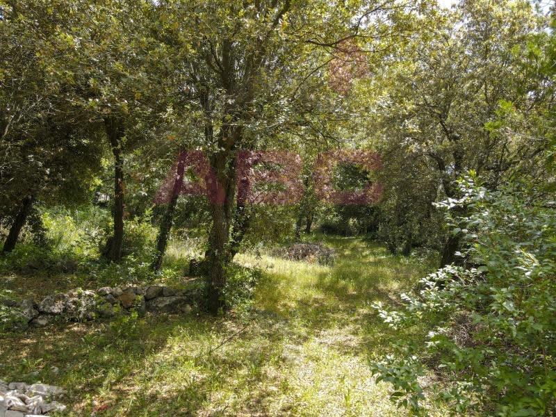 Vente terrain St maximin la ste baume 245000€ - Photo 2