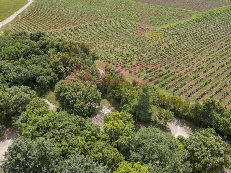 Vente terrain St maximin la ste baume 245000€ - Photo 4