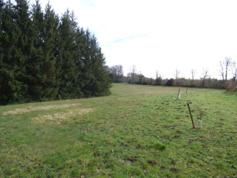 Vente terrain St amans valtoret 75000€ - Photo 2