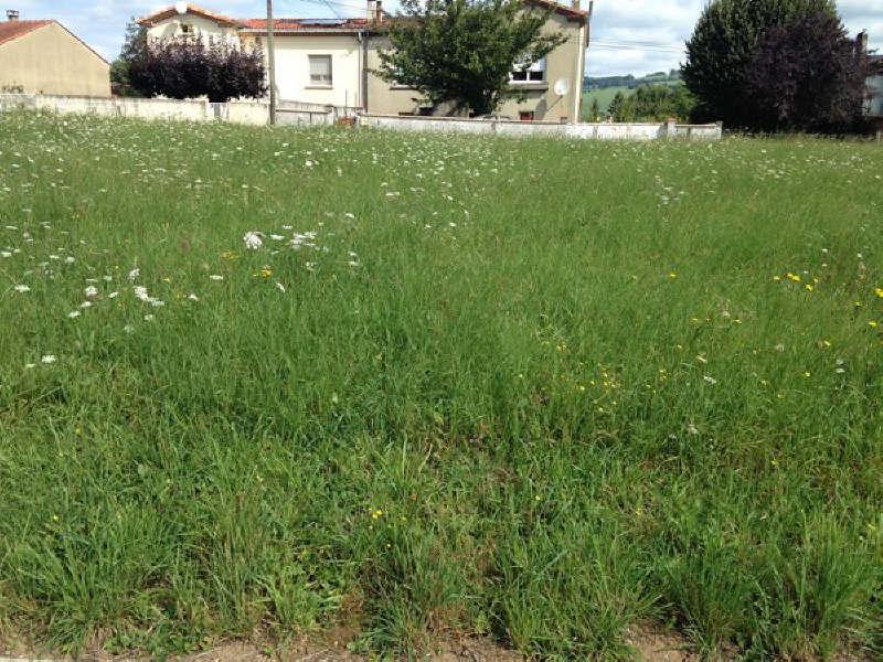 Vente terrain Proche de st amans soult 33500€ - Photo 1