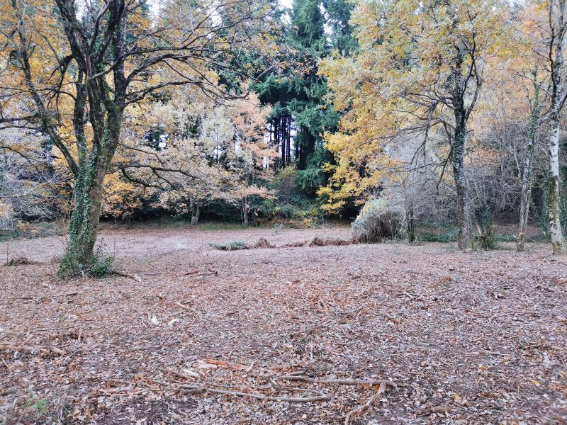 Vente terrain Bout du pont de l'arn 57000€ - Photo 1