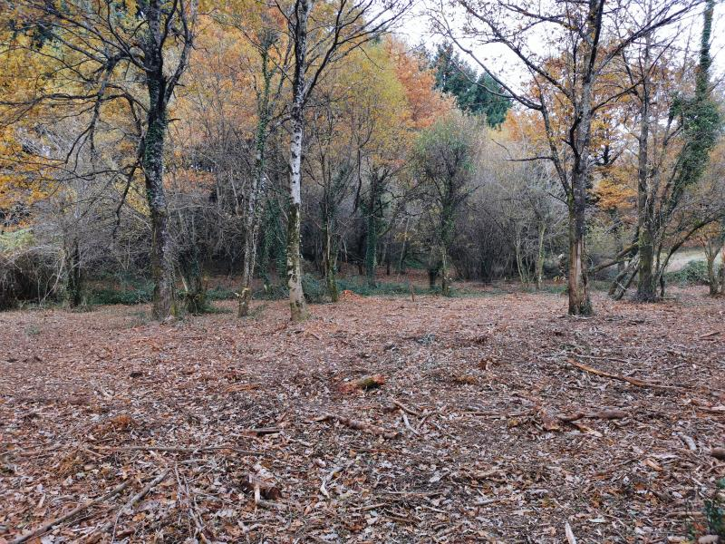 Vente terrain Bout du pont de l'arn 57000€ - Photo 2
