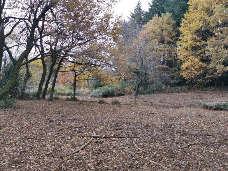 Vente terrain Bout du pont de l'arn 57000€ - Photo 3