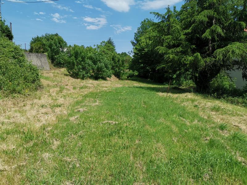 Vente terrain St amans valtoret 35000€ - Photo 1
