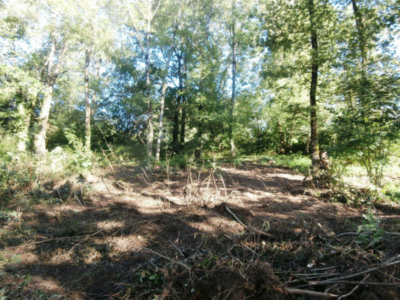 Vente terrain Environs de mazamet 34000€ - Photo 2