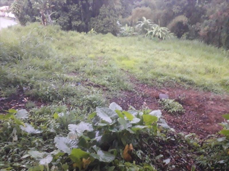 Vente terrain Ste marie 77000€ - Photo 2
