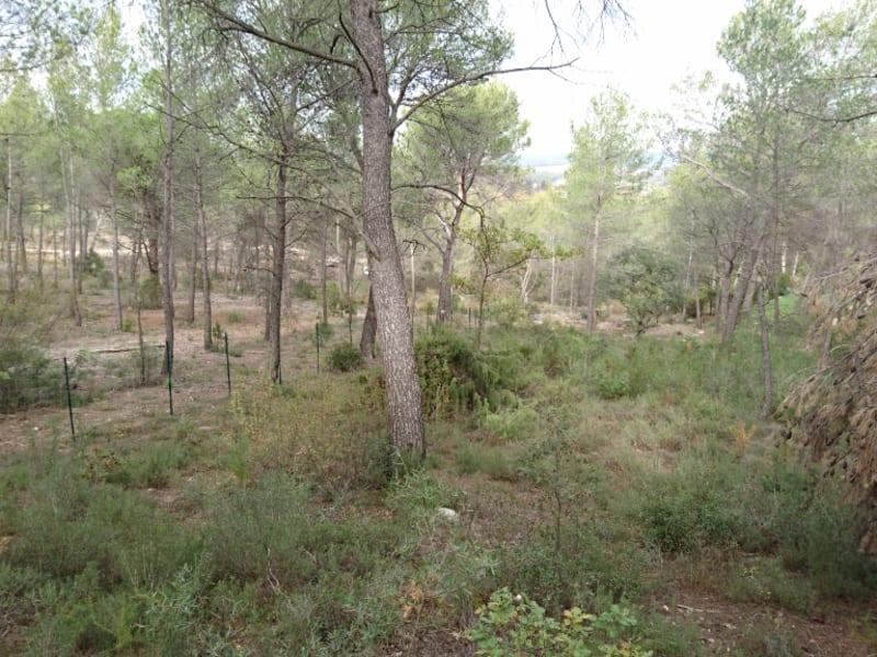 Vente terrain Aix en provence 60000€ - Photo 4