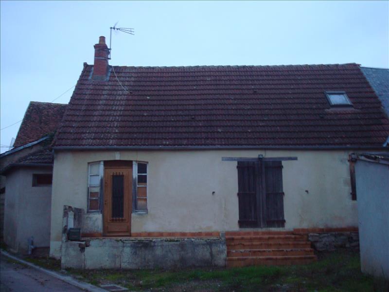 Sale house / villa Anlezy 20000€ - Picture 1