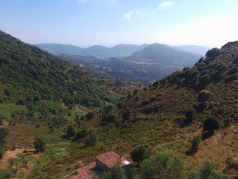 Vendita terreno Santa maria figaniella 130000€ - Fotografia 1
