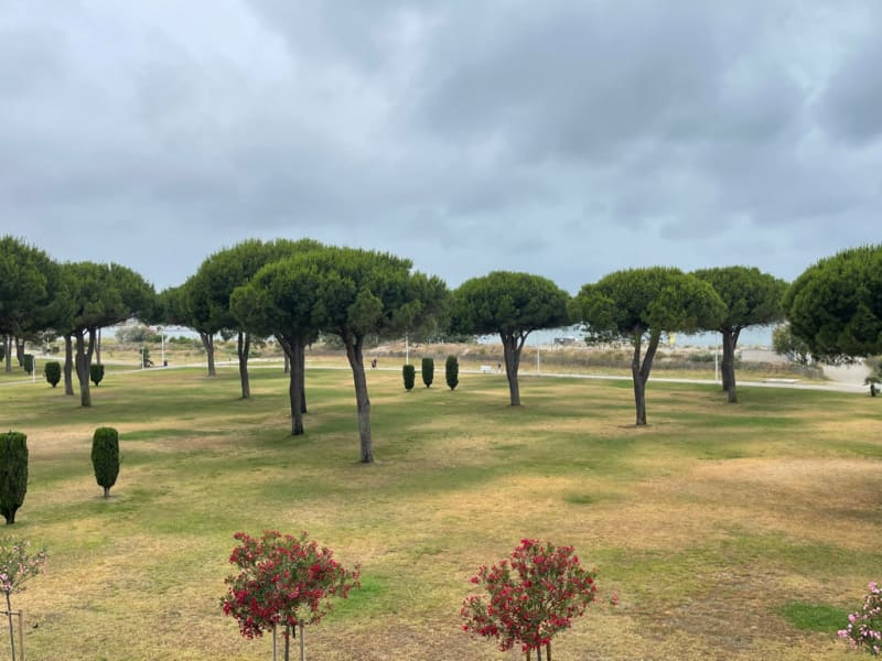 Vermietung von ferienwohnung wohnung Port camargue 650€ - Fotografie 4