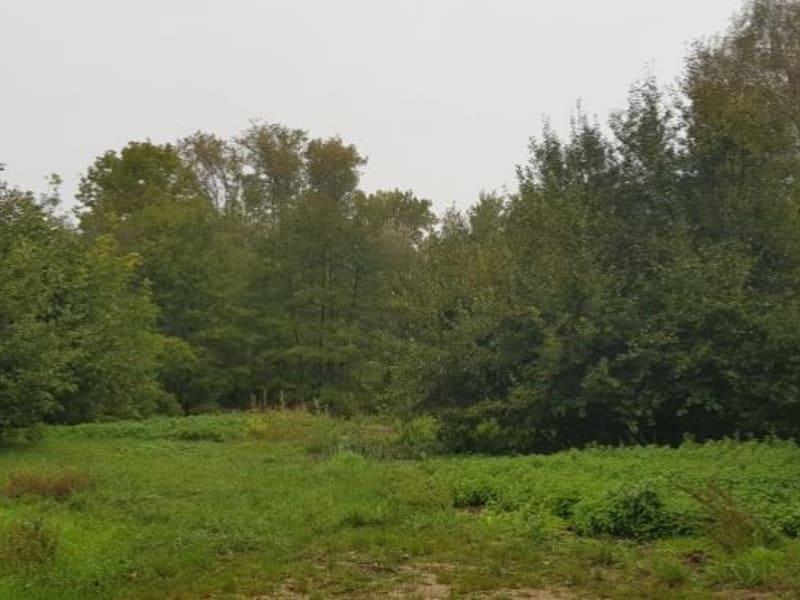 Vente terrain Izernore 135000€ - Photo 1