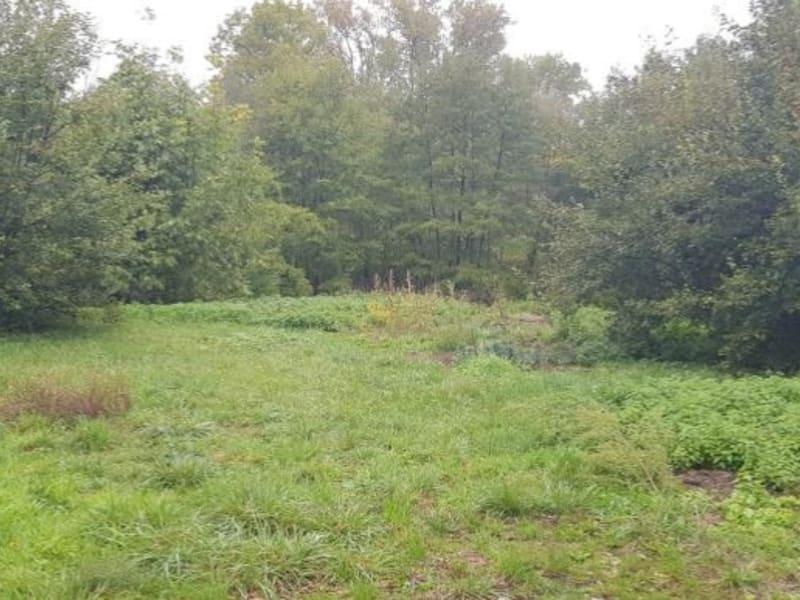 Vente terrain Izernore 135000€ - Photo 5