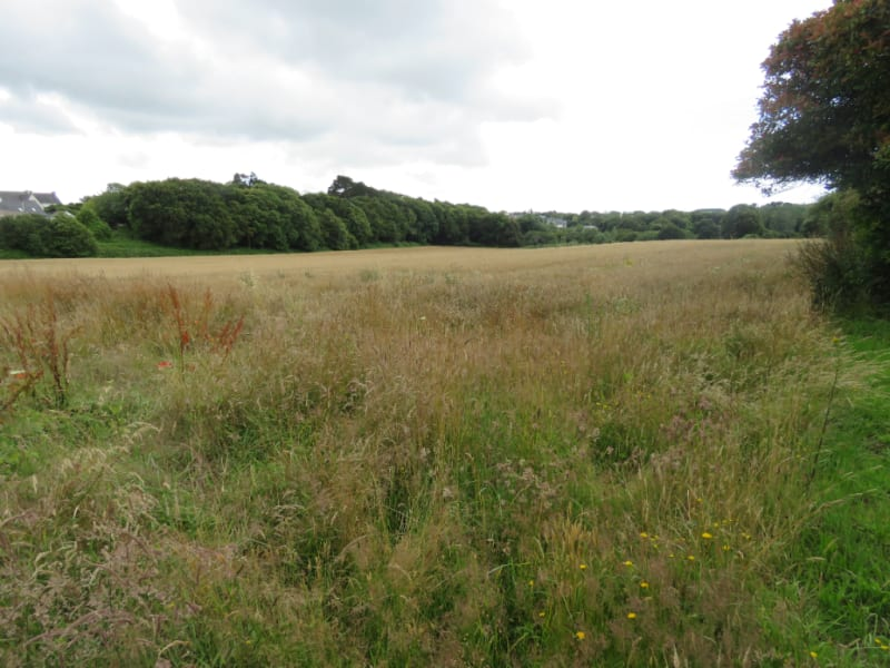 Vente terrain Ploneour lanvern 56000€ - Photo 2