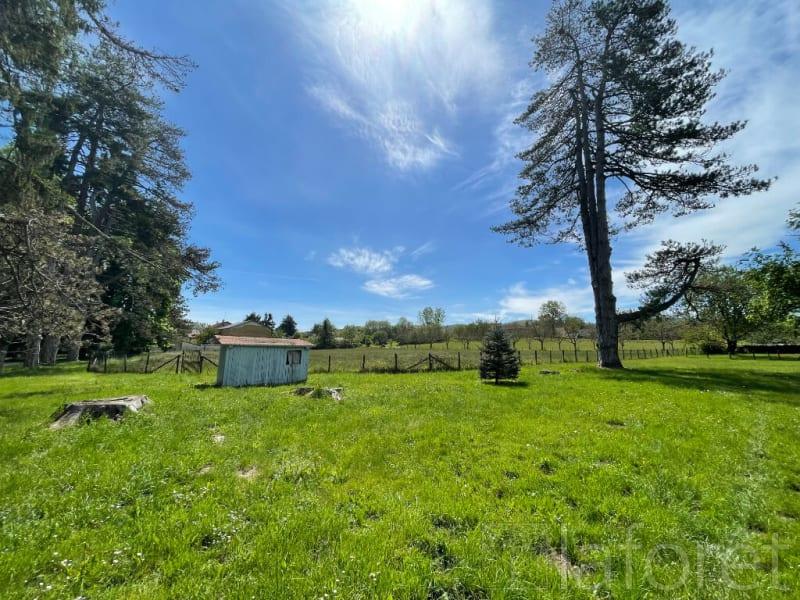 Vente de prestige maison / villa St etienne de st geoirs 450000€ - Photo 3