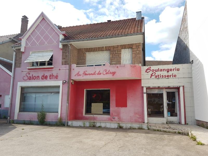 Maison à rénover Provenchères-Colroy 10 pièce(s) 250 m2