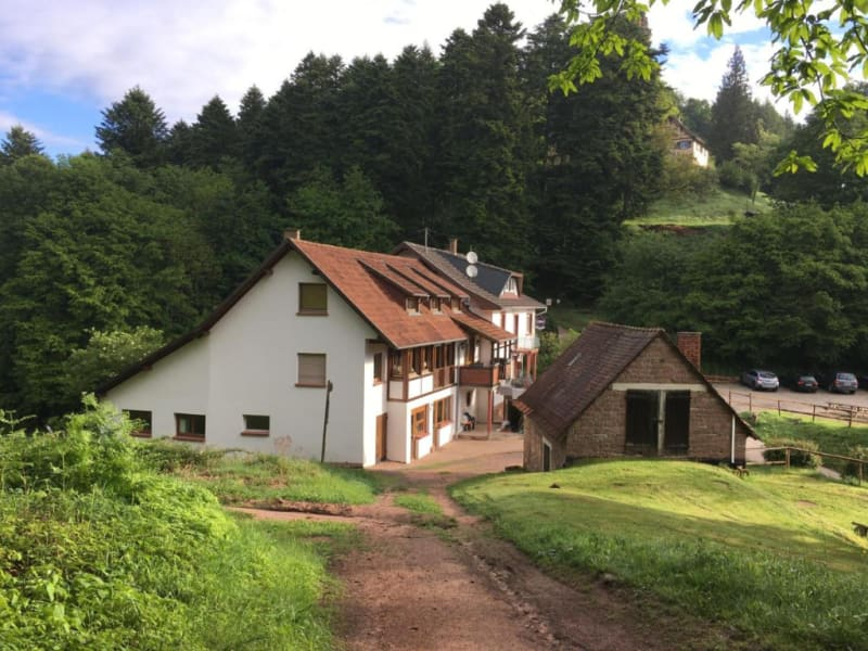 Deluxe sale private mansion Niederbronn les bains 695000€ - Picture 1