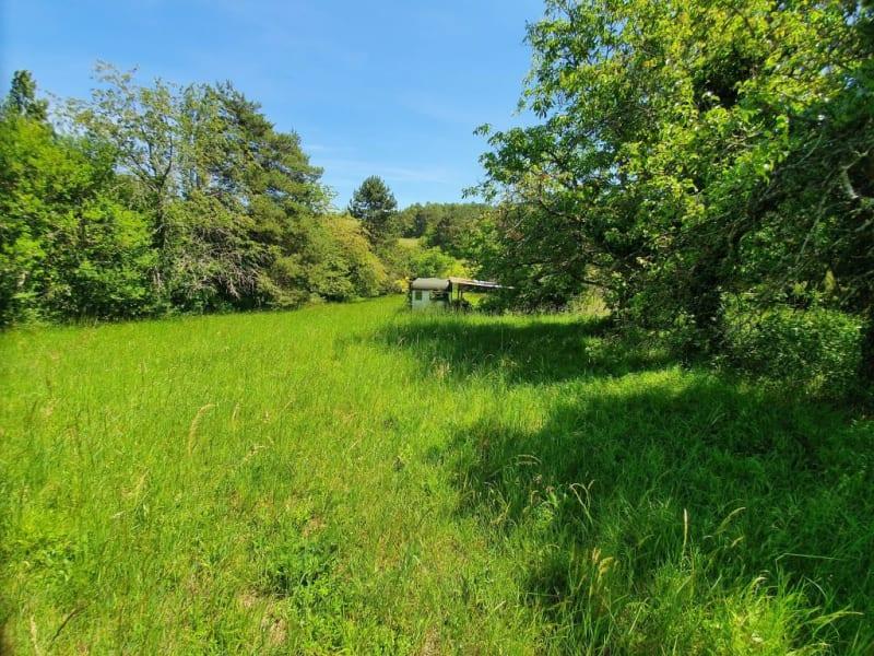 Sale site Pont sur yonne 27000€ - Picture 2