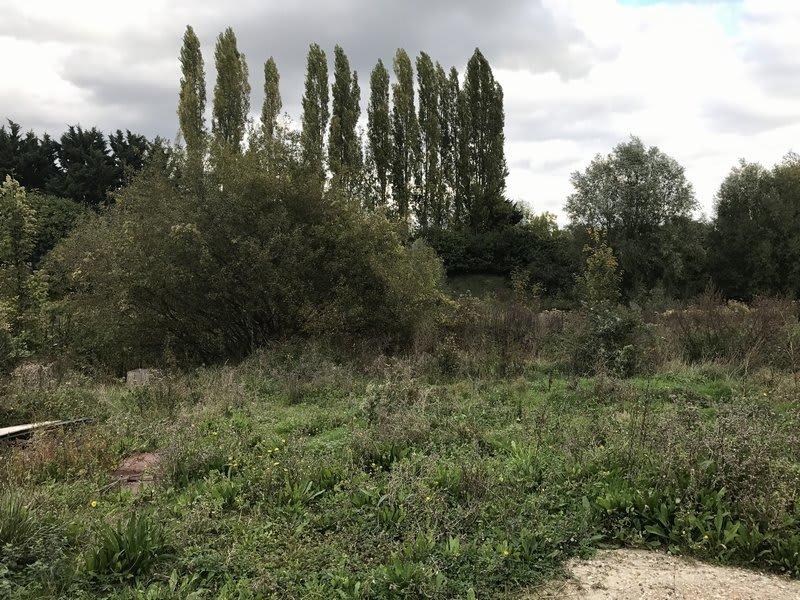 Verkauf grundstück Villennes sur seine 618450€ - Fotografie 1