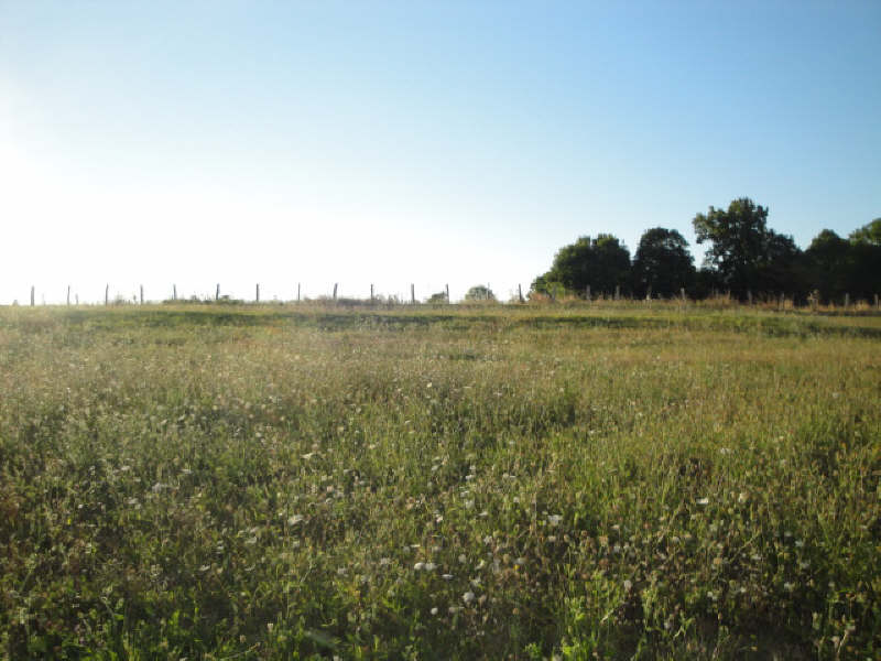 Vente terrain Auge 27706€ - Photo 3