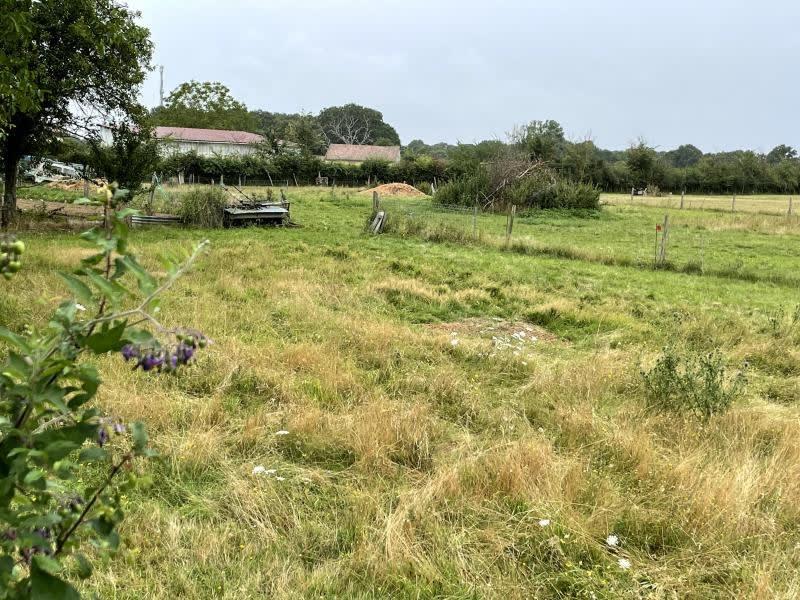 Vente terrain Fleure 39000€ - Photo 1