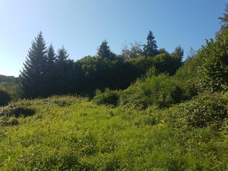Vente terrain Nayemont les fosses 43600€ - Photo 2
