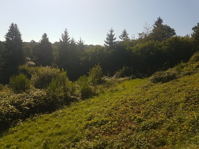 Vente terrain Nayemont les fosses 43600€ - Photo 3
