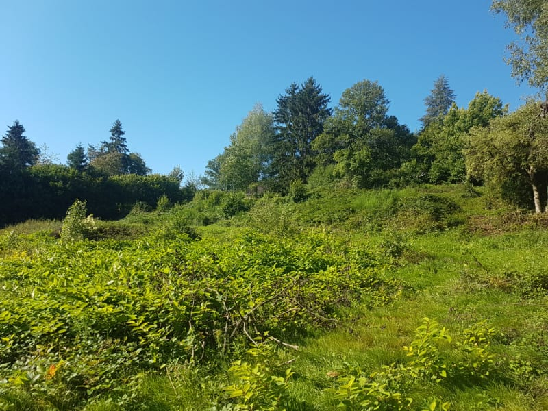 Vente terrain Nayemont les fosses 38600€ - Photo 3