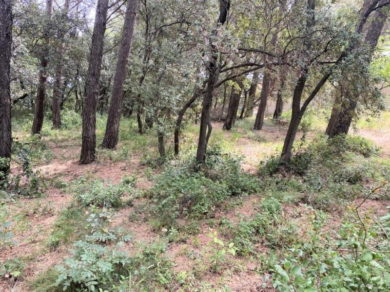 Vente terrain Sauveterre 460000€ - Photo 4