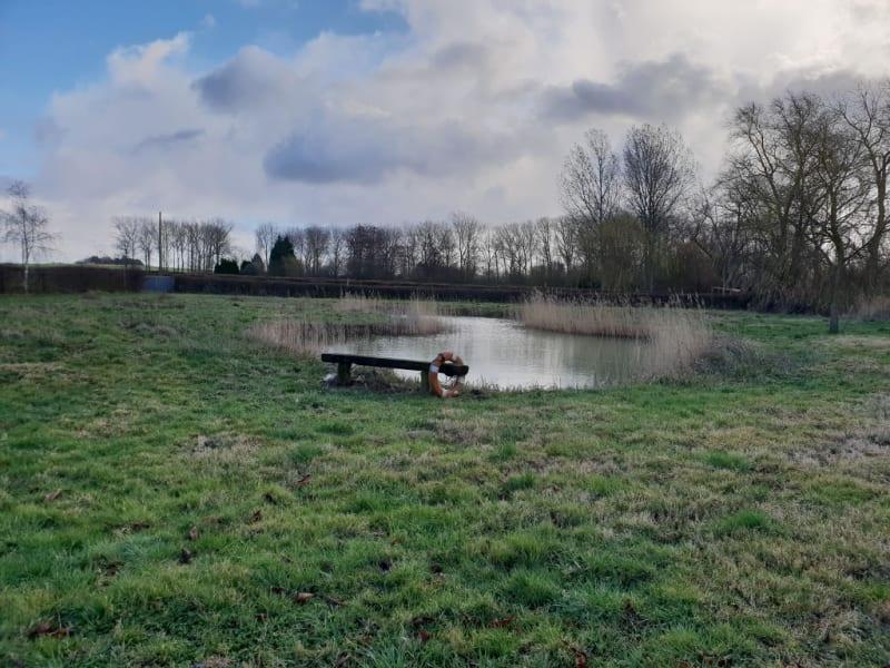 Sale site Noordpeene 36300€ - Picture 1