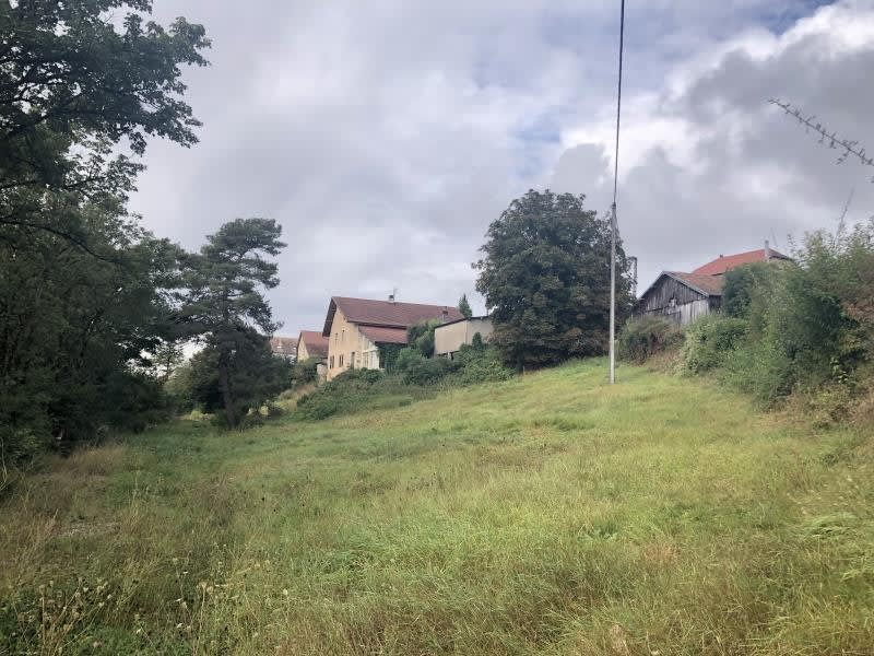 Vente terrain Montfaucon 140000€ - Photo 3