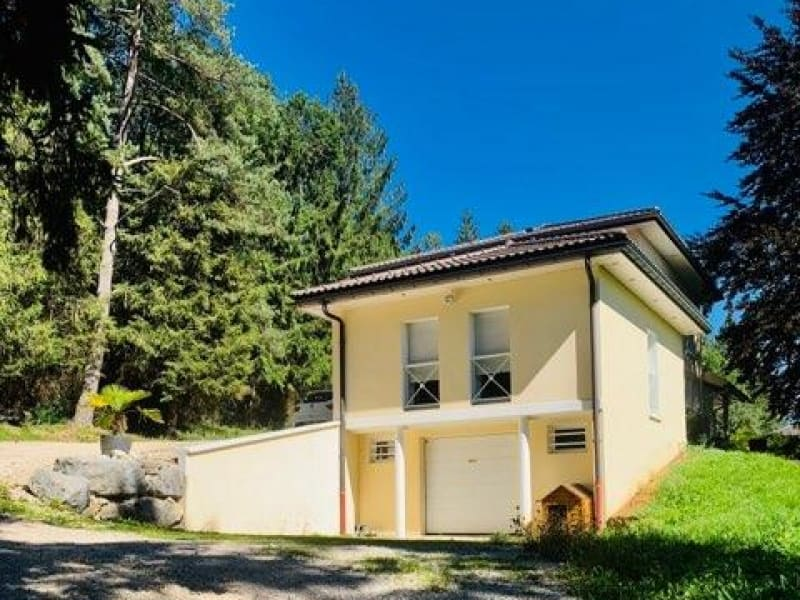 Sale house / villa Oyonnax 330000€ - Picture 13