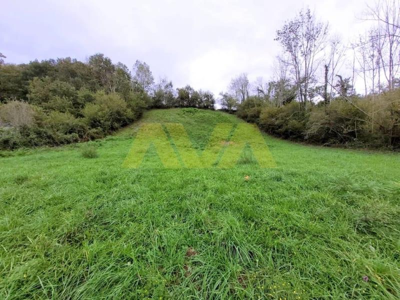 Venta  terreno Tardets-sorholus 44000€ - Fotografía 3