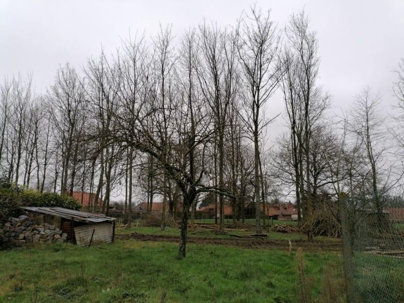 Sale house / villa Auchy au bois 239200€ - Picture 7