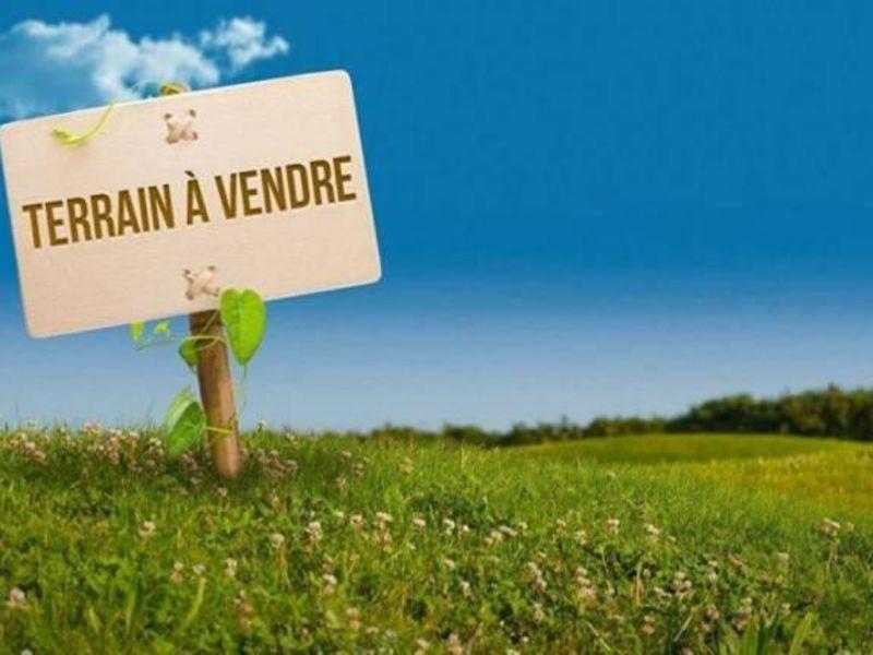 Sale site Montoire sur le loir 16000€ - Picture 1