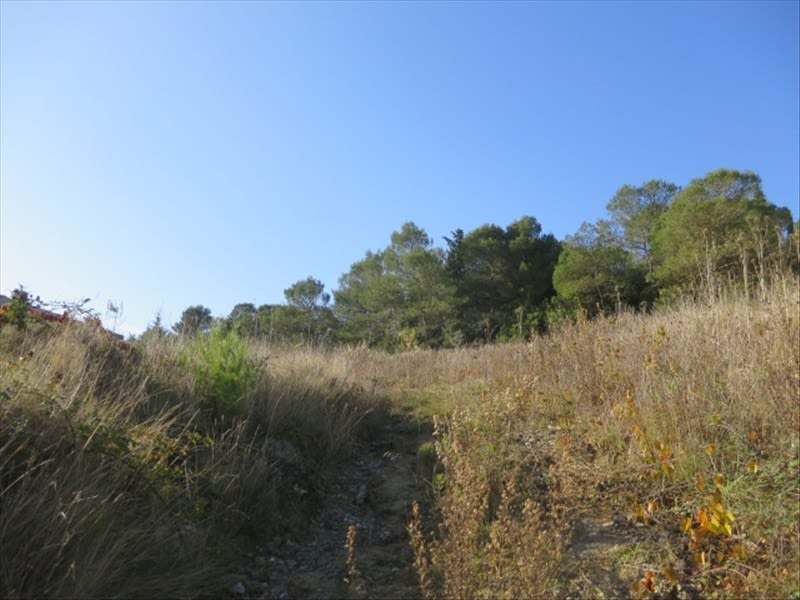 Vente terrain Villemoustaussou 75000€ - Photo 4