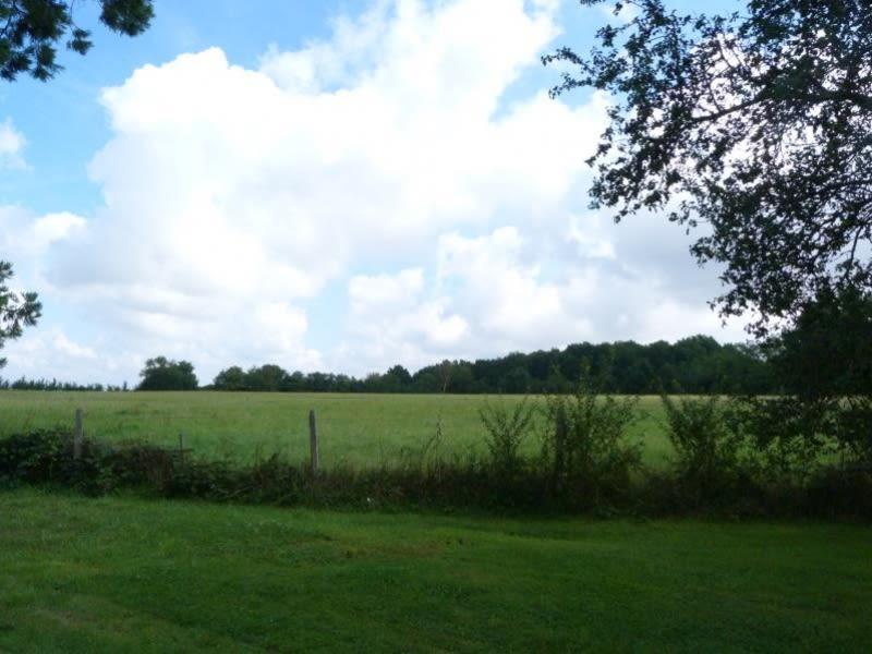 Sale house / villa Charny oree de puisaye 575000€ - Picture 3