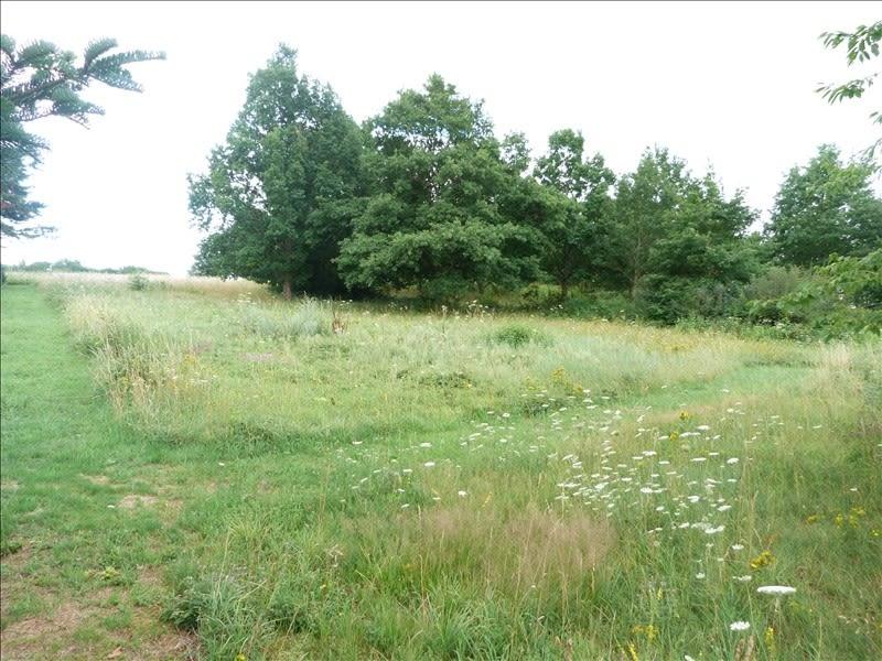 Sale site Douchy-montcorbon 18300€ - Picture 2