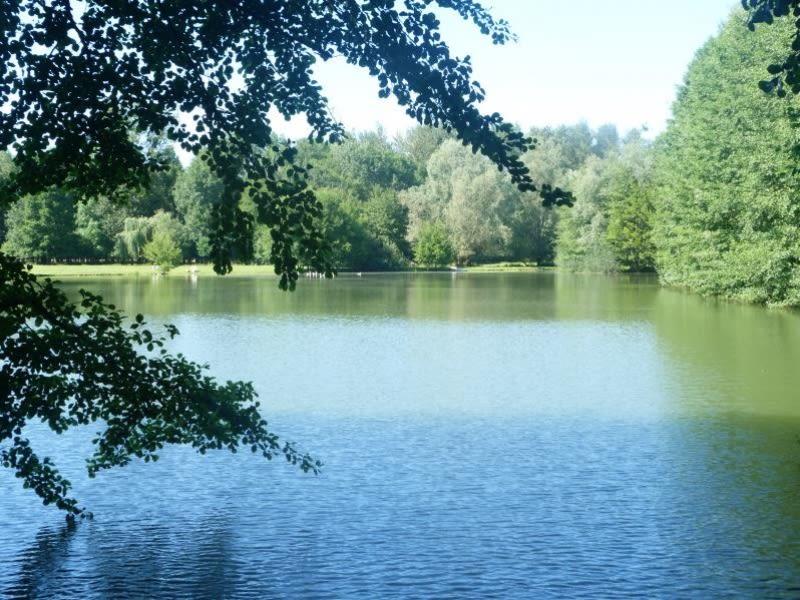Vente terrain Charny oree de puisaye 108000€ - Photo 1