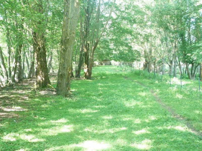 Vente terrain Charny oree de puisaye 108000€ - Photo 6