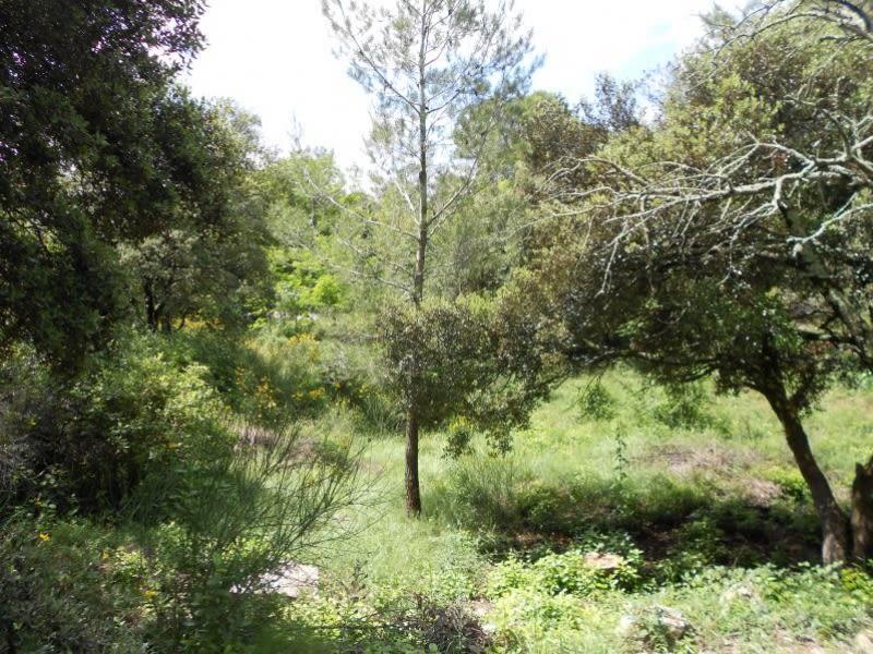 Vente terrain Nimes 216000€ - Photo 1