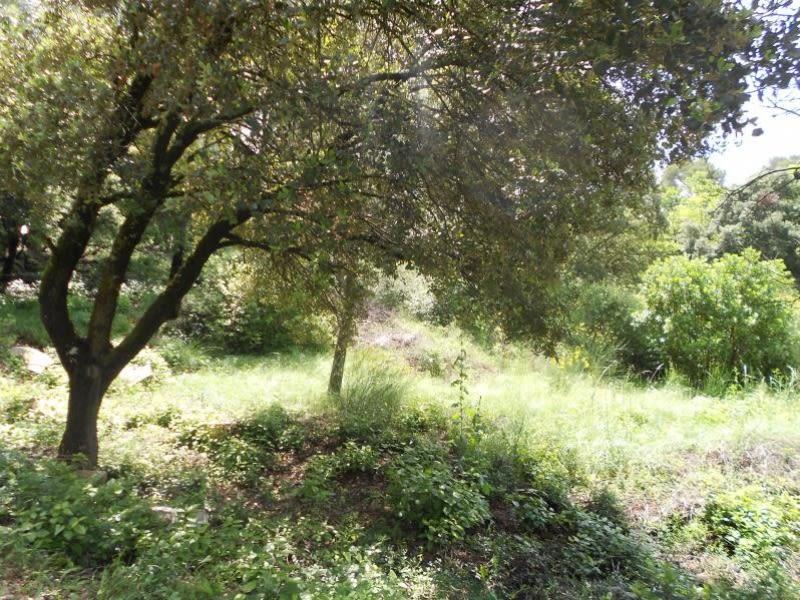 Vente terrain Nimes 216000€ - Photo 2