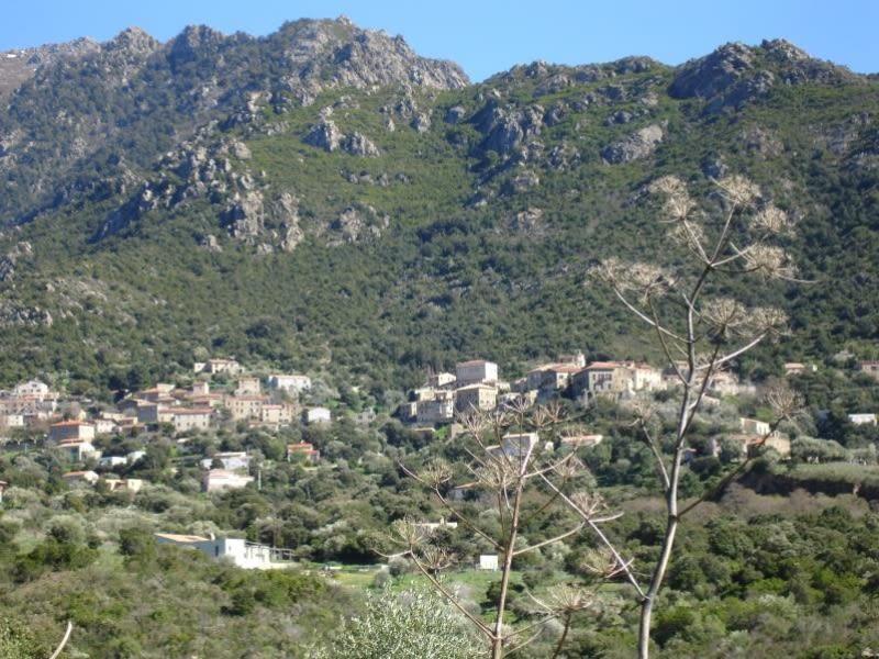 Vente maison / villa Urtaca 665000€ - Photo 3