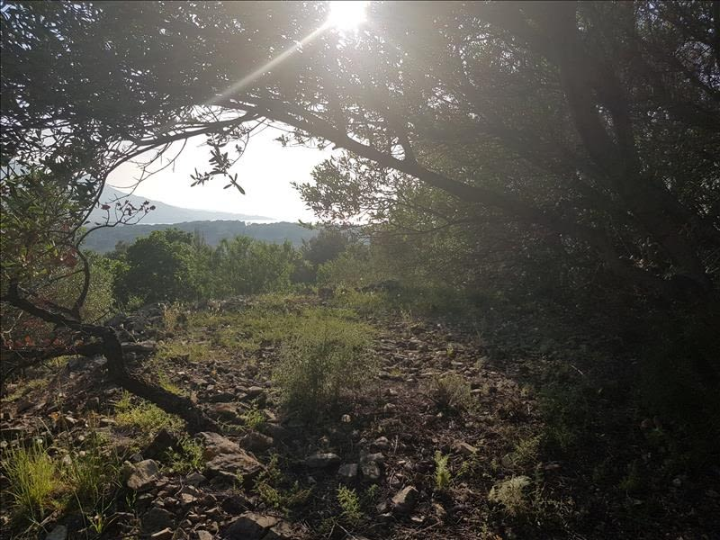 Vente terrain Corbara 720000€ - Photo 2