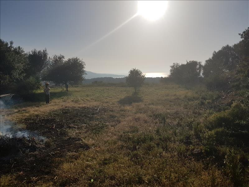 Vente terrain Corbara 720000€ - Photo 3
