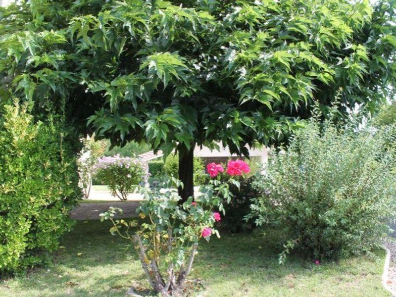 Vendita casa Langon 327200€ - Fotografia 2