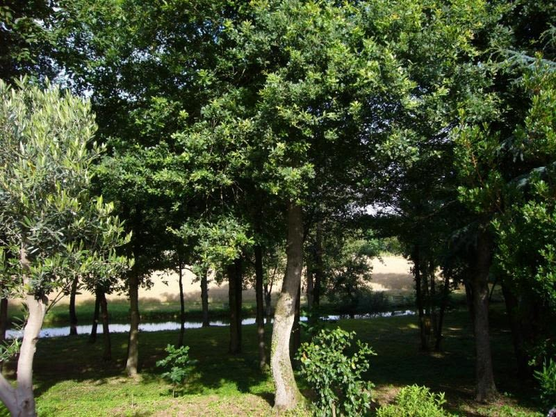 Vente maison / villa Chatellerault 630000€ - Photo 6