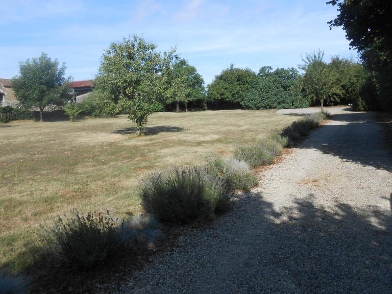 Vente terrain Niort 127000€ - Photo 1