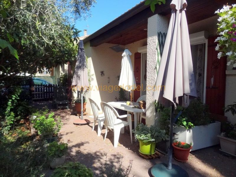 Vitalicio  casa Marsillargues 217500€ - Fotografía 5