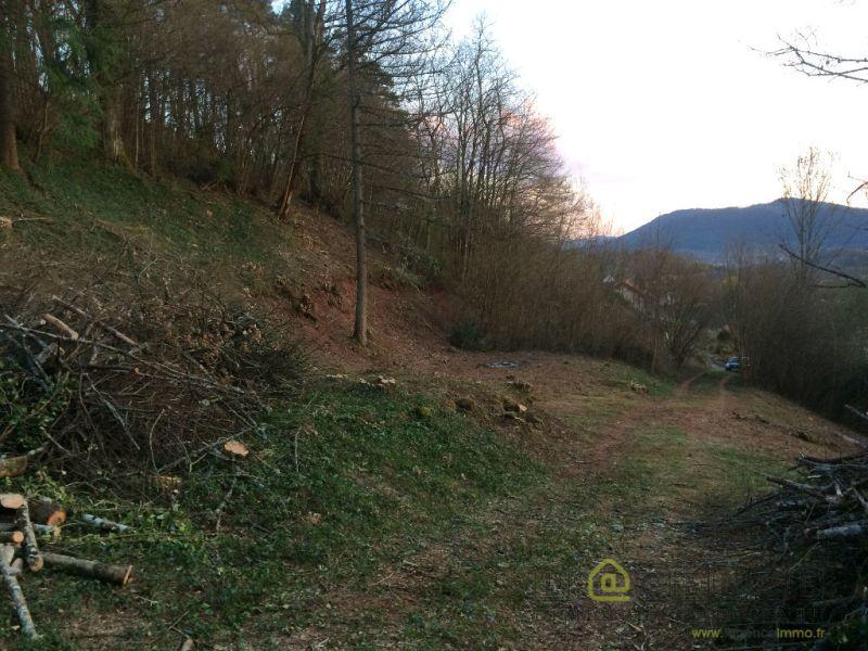 Vente terrain Saint die des vosges 24900€ - Photo 1